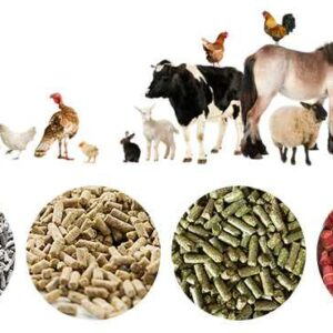 خوراک دام و طیور آورتین