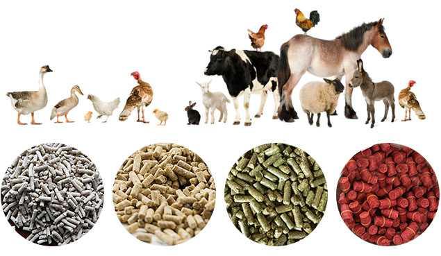 صنایع خوراک دام و طیور آورتین